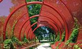 B mill race saitowitz tunnel